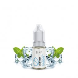 Iceberg - Savourea  10ml TPD READY