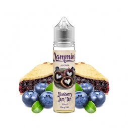 Blueberry Jam 0mg 50ml - Jammin
