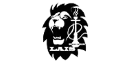 lais logo.png